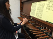 Tiffany with Carillon